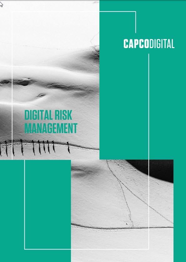 Digital Risk Management PDF
